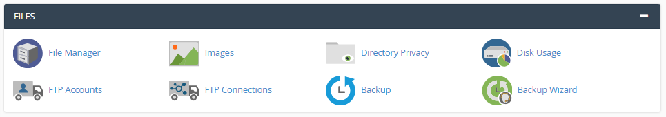 cPanel Files Section