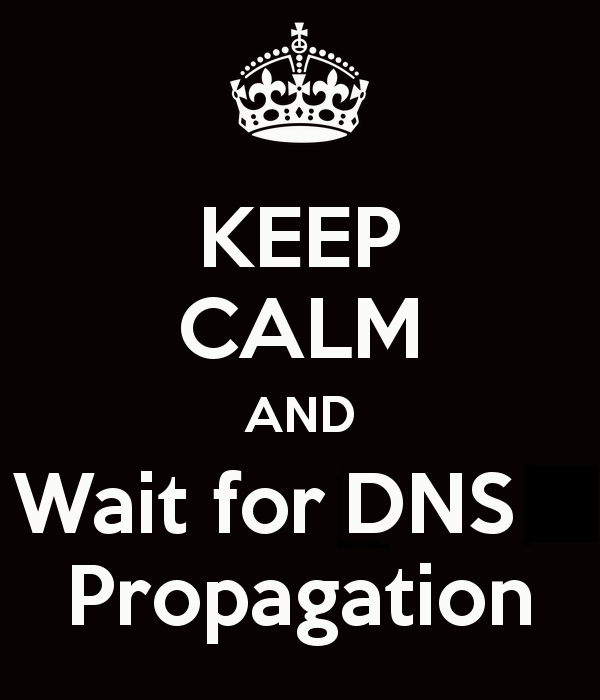 DNS Propgation How Long do DNS changes take