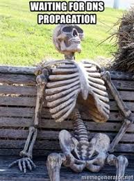 Waiting for DNS Propagation