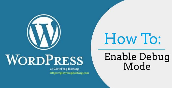 How to Turn on Debug Mode in WordPress